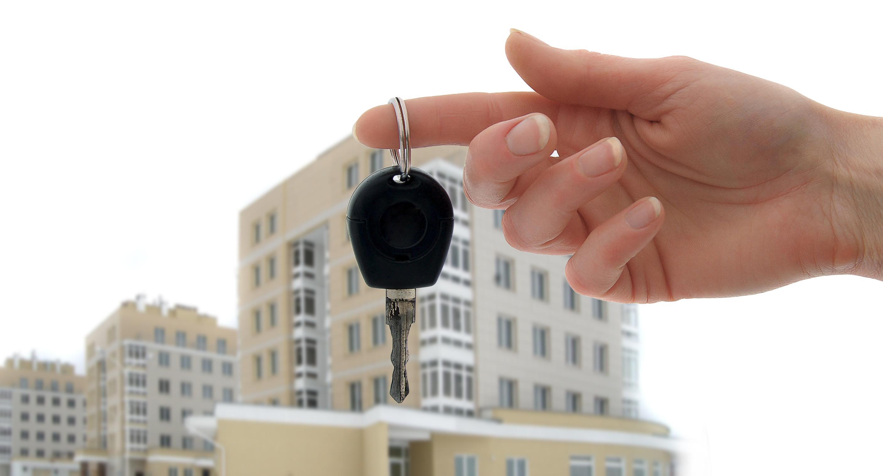 бесплатные консультации по недвижимости в спб